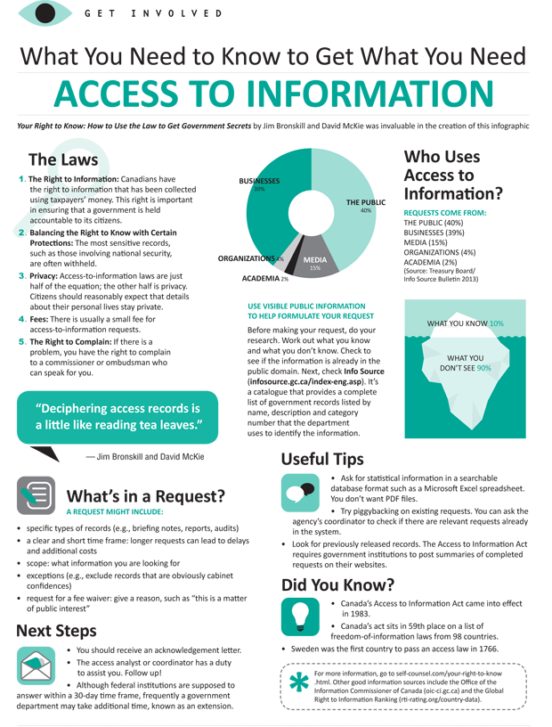 Access to Information Infographic
